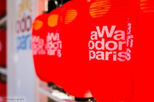 Awa Odori Paris 2015